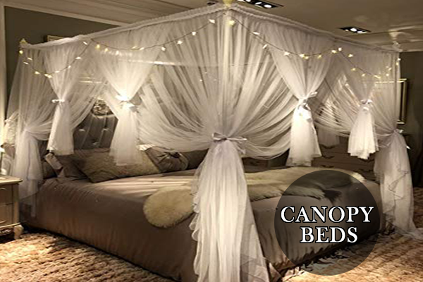 Best Canopy Beds – Types, Advantages And Disadvantages | Complete .