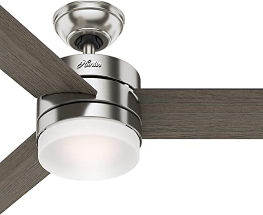 Hunter 54in Contemporary Ceiling Fan with Remote Control in .