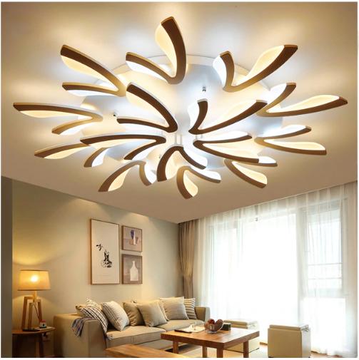 Contemporary Ceiling Lights