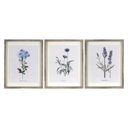 """Set Of 3) 16""""x20"""" Framed Vintage Botanicals Decorative Wall Art ."""