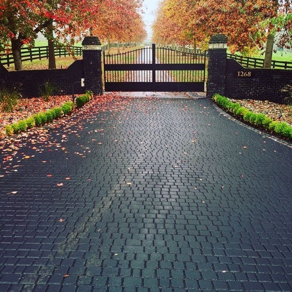 Top 60 Best Driveway Ideas - Designs Between House And Cu