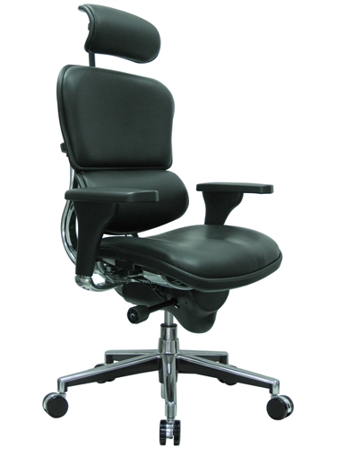 Eurotech LE9ERG Leather Executive Chair with Headrest and .
