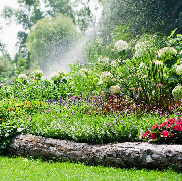 15 Best Gardening Edging Ideas - Creative and Cheap Garden Border .
