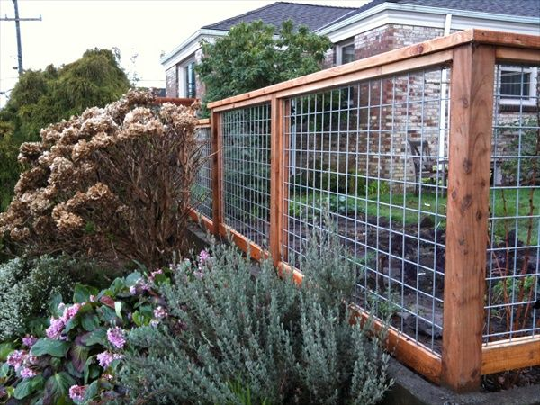 10 DIY Cheap Garden Fencing Projects | Cheap garden fencing .