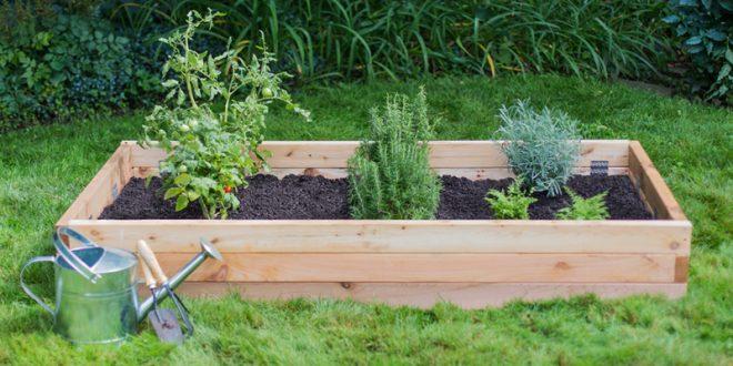 Raised Garden Beds vs. Elevated Garden Planters - Outdoor Essentia