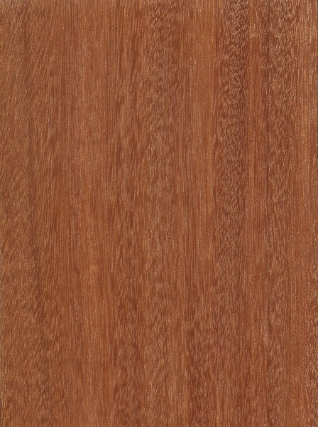 Santos Mahogany | The Wood Database - Lumber Identification (Hardwoo