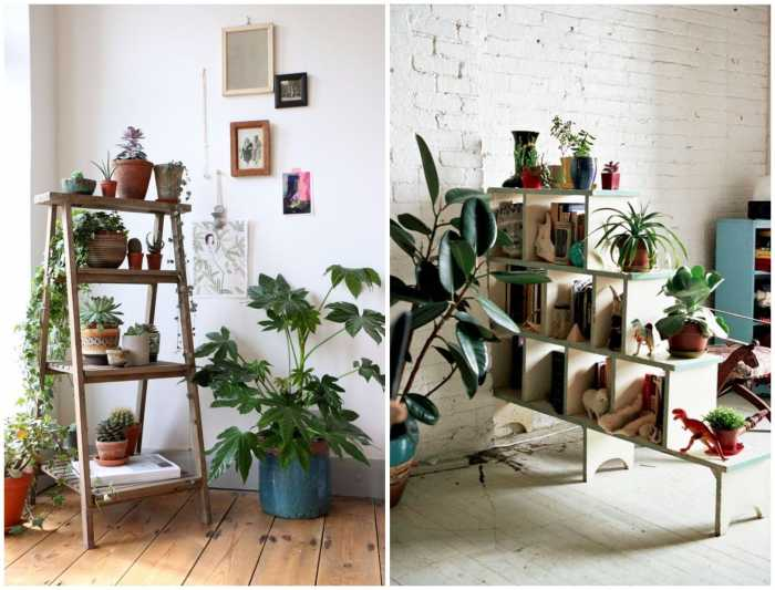 Mangal Parinay - Go Green Home Decor Ideas With These Exotic Plants.