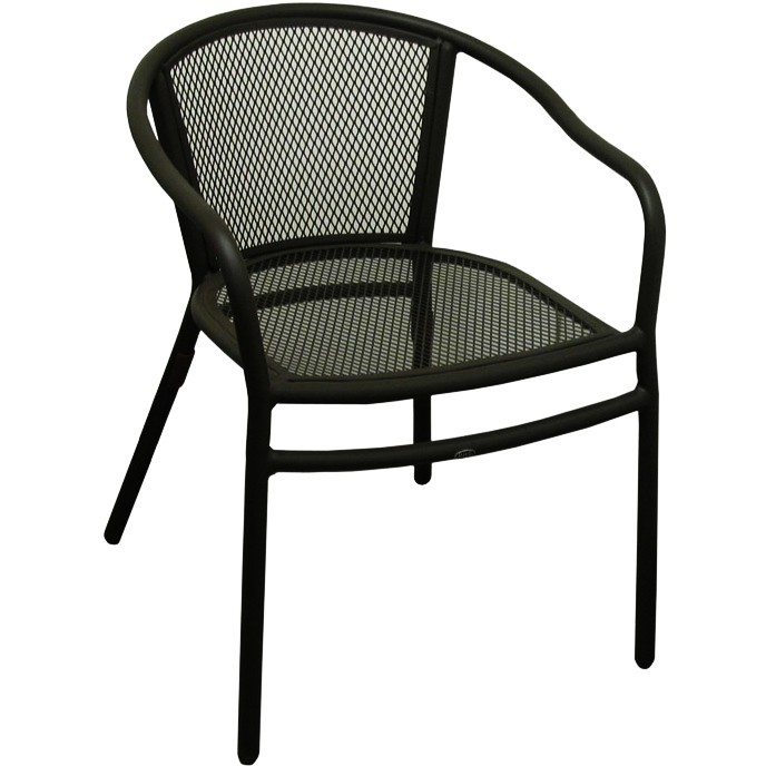 Rosa Metal Patio Chair With Arms in Black Fini