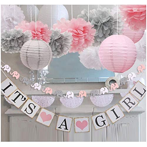 Pink and Gray Baby Shower Decorations: Amazon.c