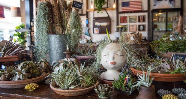 Vintage meets modern at The Potting Shed in Orange – Orange County .
