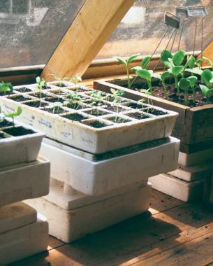 In Pursuit of the Perfect Potting Shed - FineGardeni