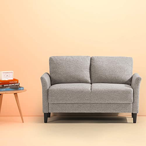 Loveseat for Bedroom: Amazon.c