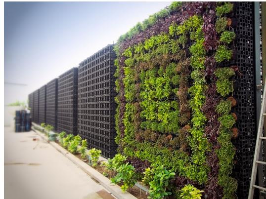 Atlantis Gro-wall - PRO - Gro-Wall - Vertical Garden System .