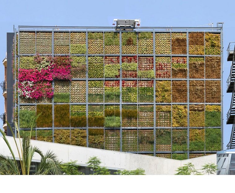 Six-Story Vertical Garden Sprouts in San Vicente Town Squa