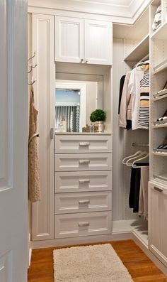 343 Best Small Walk in Closet Ideas images | Walk in closet .