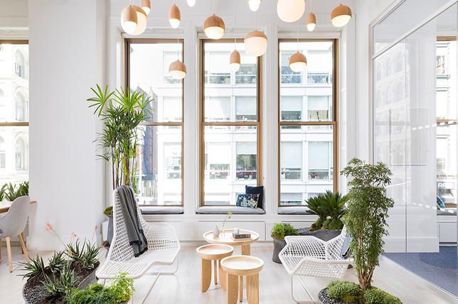Office decor ideas plants
