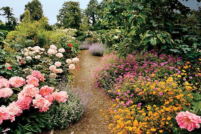 floral little garden ideas