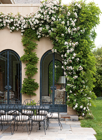 breathtaking little garden ideas