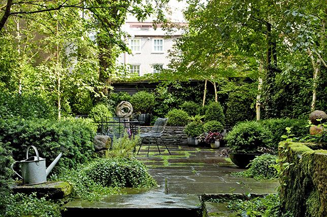 modern little garden ideas