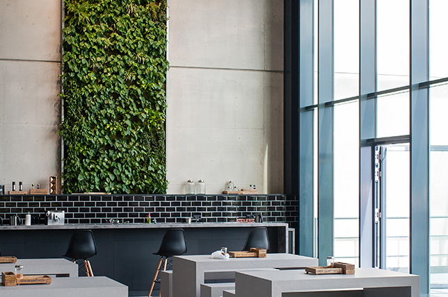 vertical garden pinterest home decor trends 2019