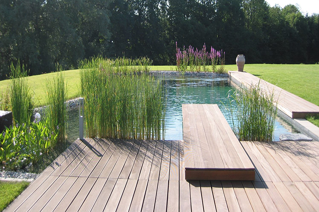 natural pool pinterest home decor trends 2019