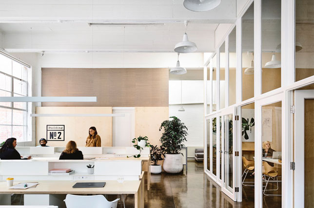chic office decor trends