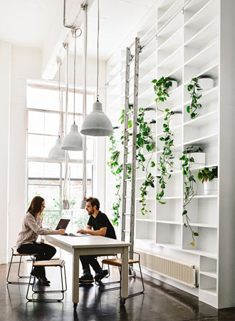 sustainable office decor trends