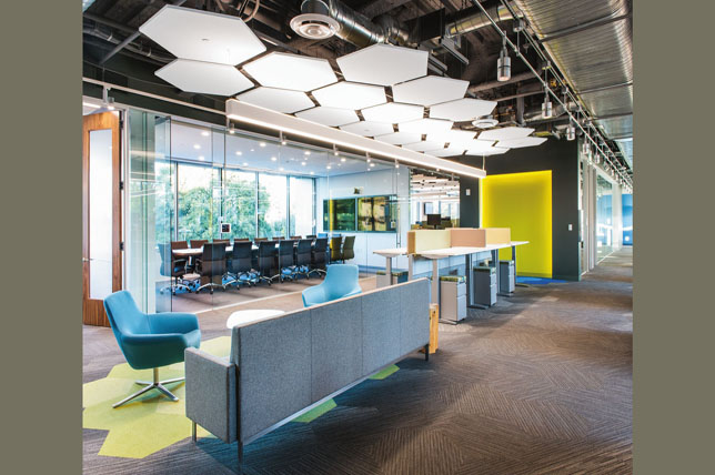 colorful office decor trends