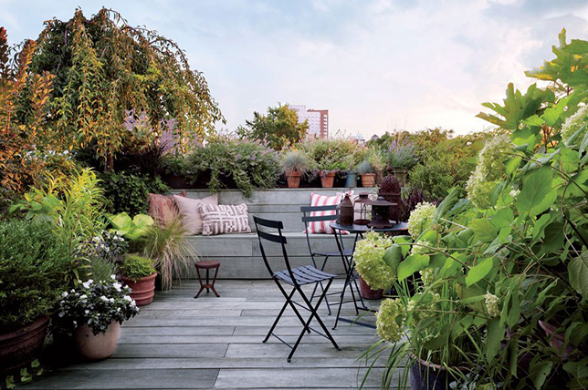 Roof backyard ideas 2019