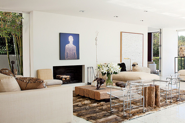 contemporary fireplace ideas