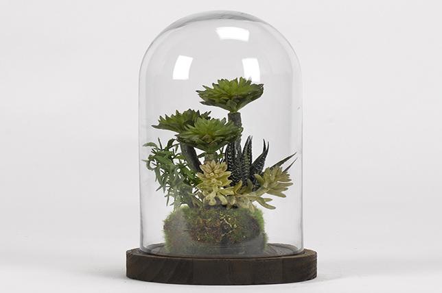 Bathroom flowers terrarium