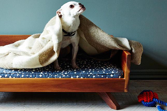 best pet furniture mid century modern dog bed