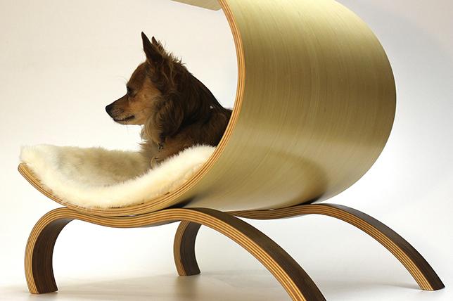 best pet furniture dog bed