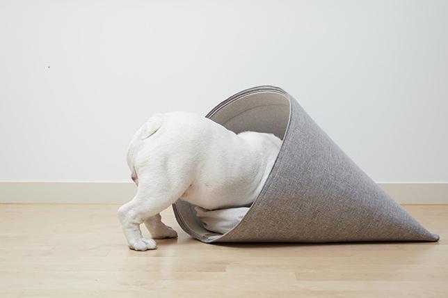best pet furniture felt dog bed