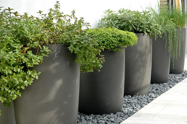 modern garden planter landscaping ideas