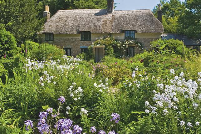 Cottage garden landscaping ideas