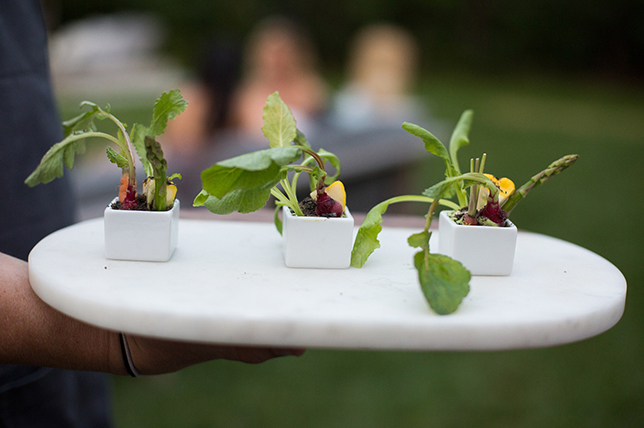 Tips for planning ideas for summer parties