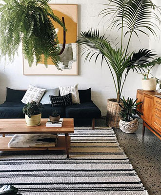 Add plants to your wellbeing