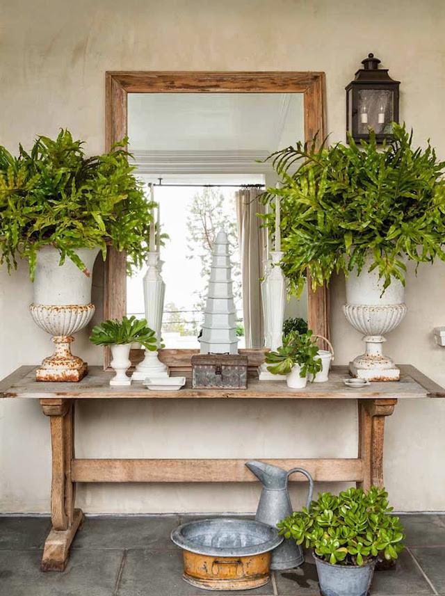 rectangular mirror wood table plants