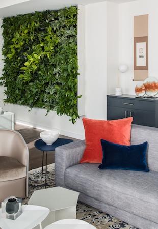 Indoor plants living plant wall