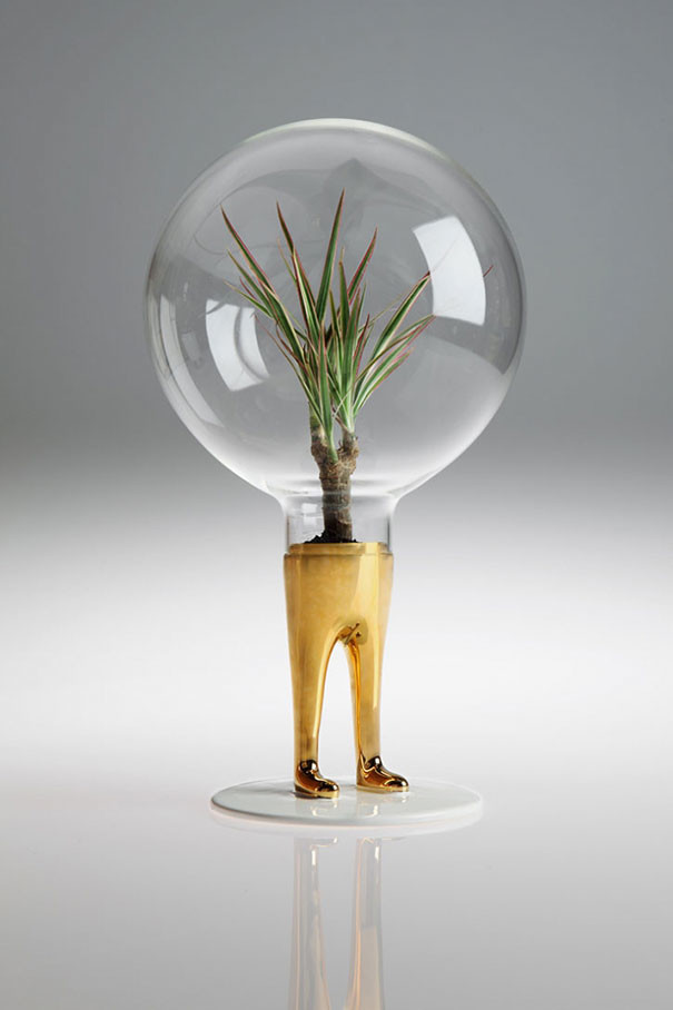 Glass terrarium with legs
