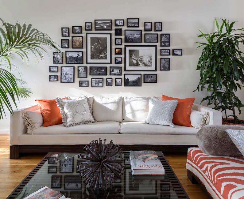 gray sofa plants