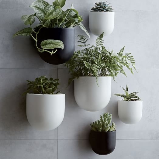 West elm hanging planters