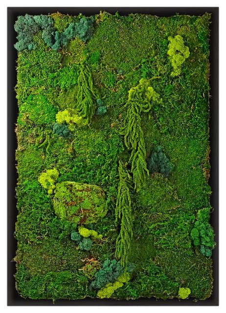 Moss plant wall