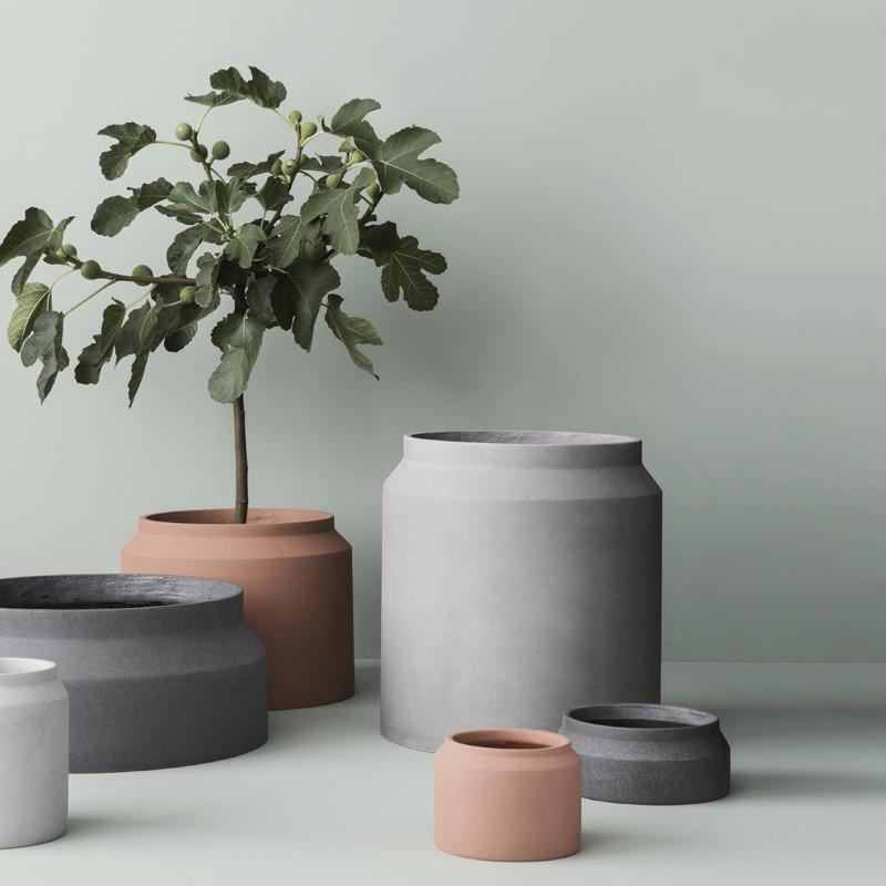 Concrete planter plants winter