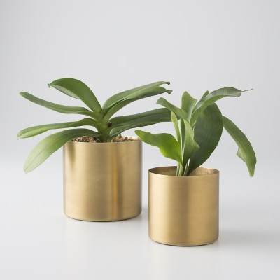 round brass planter