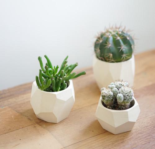 white geometric planters
