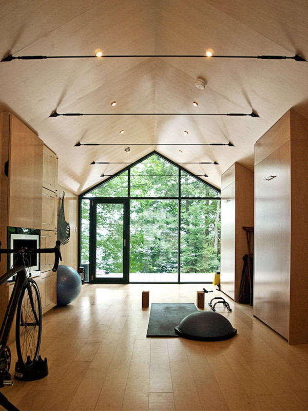 Vaulted ceiling minimal home gym