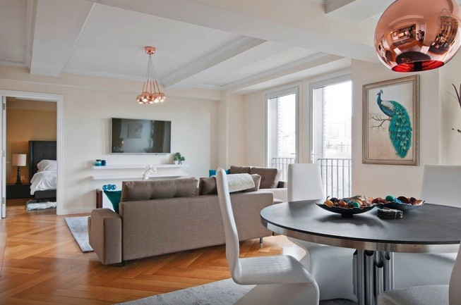 Apartment living and dining room design