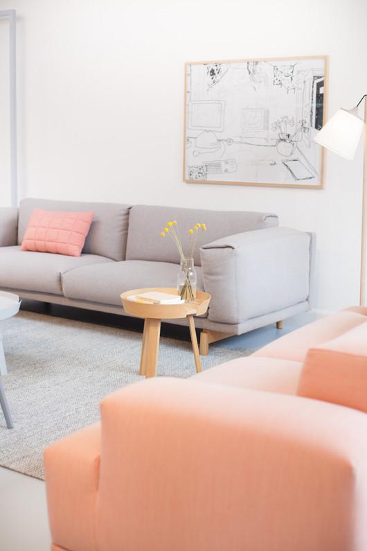 Coral color living room interior design